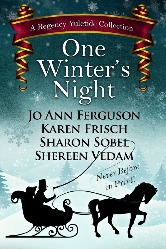 Cover for One Winter's Night by Shereen Vedam